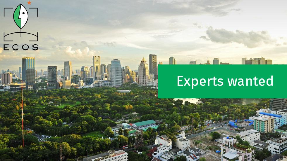 2017 - ECOS calls for expert(s)